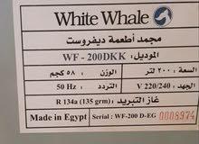 ديب فريزر white whale