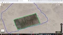مزرعة للبيع أو للإجار الأرض كاملة 65 هكتار و الشبكة 17 هكتار