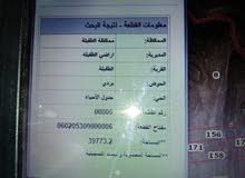 ارض 40 دنم للبيع في محافظة الطفيلة