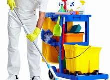 مجموعة كيان النسائية لخدمات تنظيف المنازل والمؤسسات