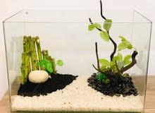 Second hand-like a new Fish Tank aquarium ready to use.