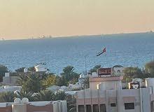 لايجار السنوي شقق غرفة وصالة مساحات ممتازة مع اطلالة علي البحر عجمان