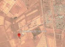 19 هكتار في جردينة مقابل مشروع الشركة الصينية