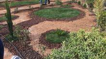 تنسيق حدائق وعمل شلالات وعناية بالاشجار
