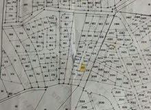 قطعة ارض في منطقة جريبا اراضي الزرقا للبيع