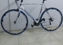 دراجة برفورمر العاصفة