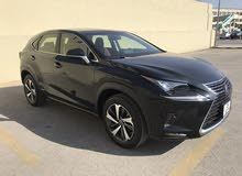 New 2018 Lexus NX for sale at best price
