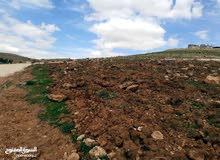 ارض في بلعما /المعمرية 3418 متر مربع تصلح للسكن وتصلح مزرعة من المالك مباشرة 16000 دينار