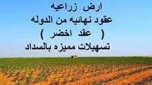 فرصة ذهبية للإستثمار الزراعي 00201119260959(واتساب)