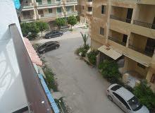 شقة 85م بالتقسيط في شاطئ النخيل الاسكندرية