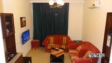 شقة 50م مفروشة صغيرة قرب ابو جباره/الجاردنز