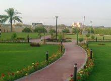 تصميم وانشاء الحدائق وزراعة النخيل بمختلف اصنافها 99666495