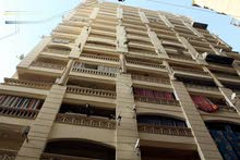 apartment More than 5 in Alexandria for sale - Moharam Bik