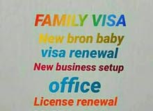 VISA SERVICES FOR FAIMLY C&W: 0528099844
