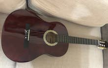 hofman guitar + Bag