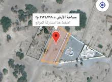 للبيع أرض زراعية الموقع (سوادي الحكماني) ولاية بركاء