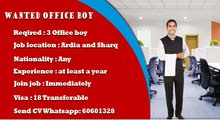 Required office boy