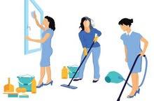تنظيف منازل ومكاتب ( إناث )