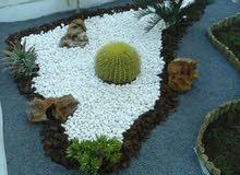 خدمات جيدة في مجال الحداءق من ديكور وغرس النباتات وتركيب نظام السقي الاوتوماتيكي