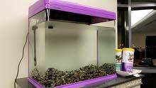 Fish aquarium + accessories حوض سمك مع المعدات