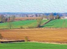 للكراء أرض فلاحية مساحتها 6هكتارات الثمن 12مليون سنويا