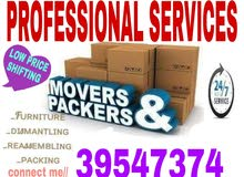 PROFESSIONAL SERVICES HOUSE OFFICE STORE FLAT PACKING AND MOVING