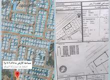 أرض سكنيه للبيع في الموالح الشمالية قريب جامع الجيطالي مساحتها 705
