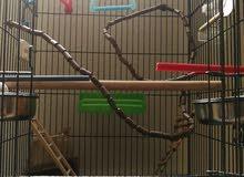 large bird cage... قفص طيور كبير