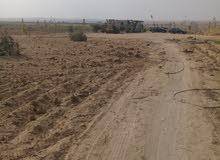 مزرعة 10 فدان قابلة للتجزاة مقننة ومسجلة  الزراعية الارض علي الطريق الرئيسي مباش