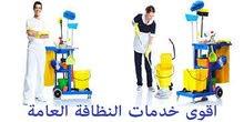 شركة تنظيف بالبخار بالطائف ومكافحة الحشرات بالطائف 0500096306