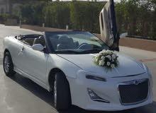 تأجير أحدث سيارات الزفاف/ الإعلانات/ التصوير الفوتوغرافى - Global Company