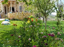 Luxurious 370 sqm Villa for sale in Ajloun