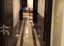 شقة مفروشة مستوي فندقي في المهندسين