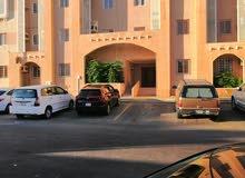 شقة للايجار في مكه حي الزايدي واحة مكه