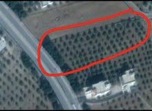 قطعة ارض مميزه تصلح لمخازن .. تقع على طريق ام قيس الرئيسي/ سما الروسان للبيع