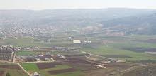 قطعة ارض في عين الباشا حوض الرملة الغربية قوشان مستقل موقع مميز