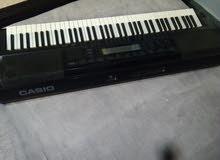 كاسيو wk500