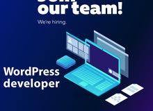 مبرمجين Wordpress / مبرمجين ASP.NET