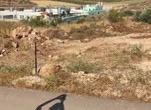 نمر اراضي جنين دير غزالة