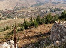 4 دونمات من أراضي ماحص