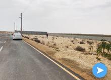 قطعة ارض مساحتها 1650 طريق قطران