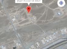 ارض زواية في العراقي 19 خلف القاعة الملكية تبعد عن الشارع 100 متر