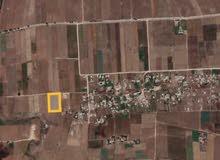 أرض للبيع مساحتها 12000م ضواحي سيدي رحال الشاطئ