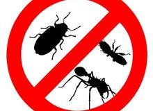 للتخلص من جميع الحشرات المزعجة
