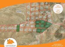 ارض 10 دونم في جنوب عمان