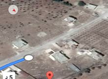 ارض للبيع في منطقة الدجنيه المفرق