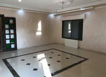 شقة أرضية في شفا بدران