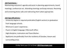 Executive Secretary in 6 October City