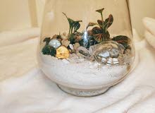 Terrarium with live plants and glass turtle