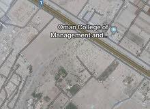 ارض سكنية للبيع في حي عاصم (السلاحة )